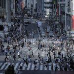 【2016年度決算】ナプラ売上高170億円、年間3000万本体制へ